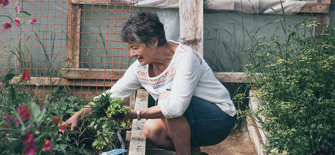 Locked down Easter: co-founder of Microbz Sue gardening in her pollytunnel