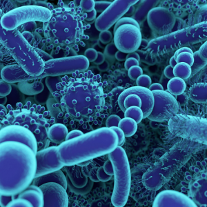 Close up of microbes